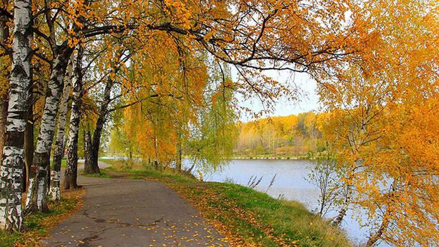 http://images.vfl.ru/ii/1538299192/198f6e11/23572191_m.jpg
