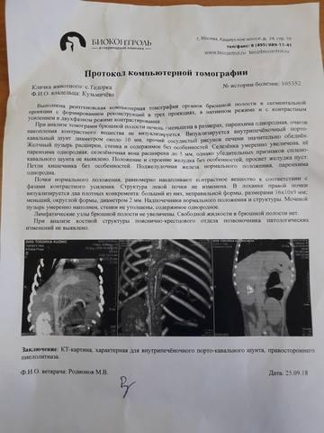 Тодора, Дорочка - совсем ребенок. 23646822_m