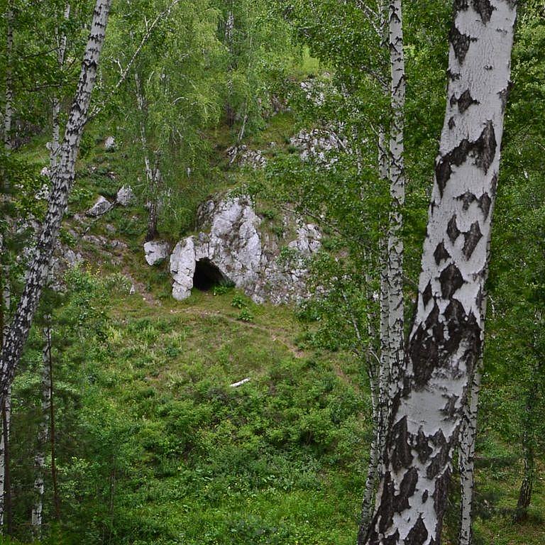 http://images.vfl.ru/ii/1539354708/bced7b6b/23763877.png