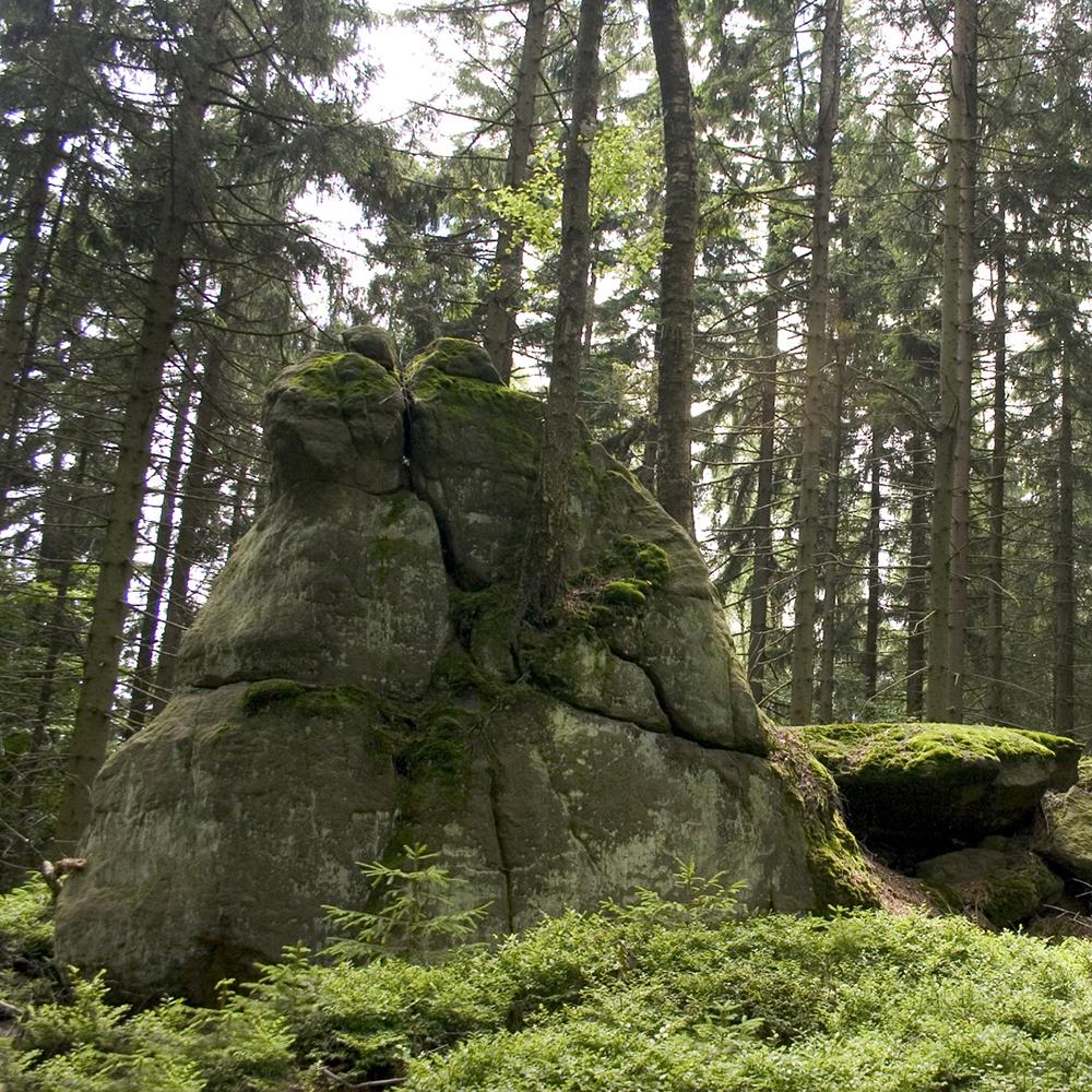 http://images.vfl.ru/ii/1539785342/c000937b/23844496.jpg