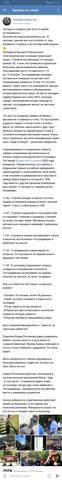 http://images.vfl.ru/ii/1539786643/c89719b1/23844825_m.jpg