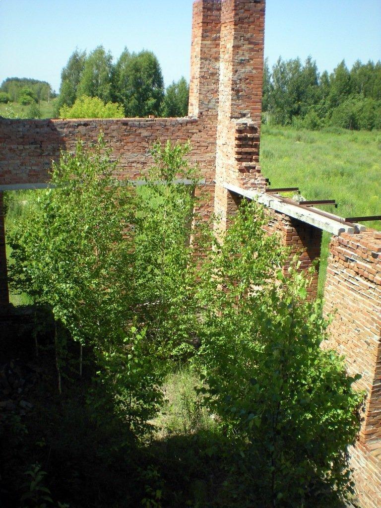 http://images.vfl.ru/ii/1540094441/1f685f3a/23891140.jpg