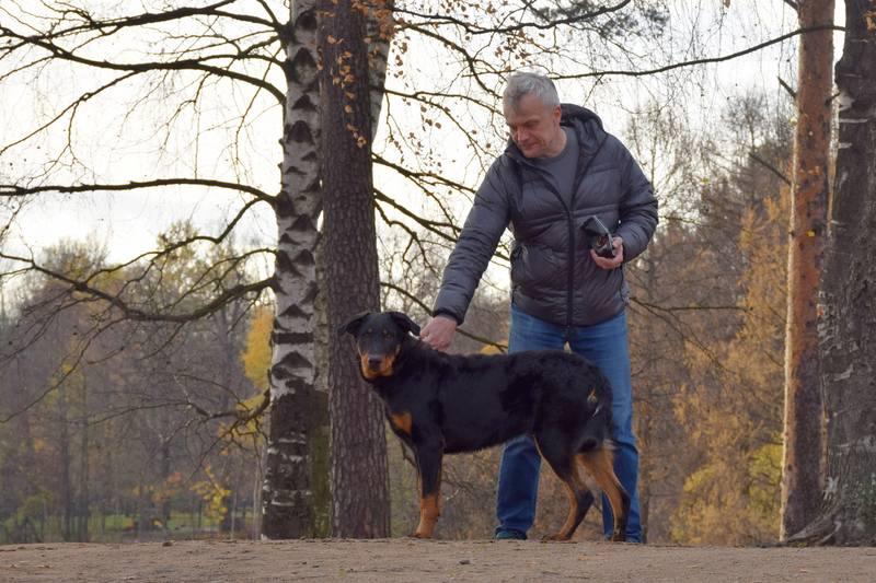 http://images.vfl.ru/ii/1540485077/adac17c4/23941536_m.jpg