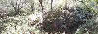 http://images.vfl.ru/ii/1540753991/7e13a52d/23979093_s.jpg