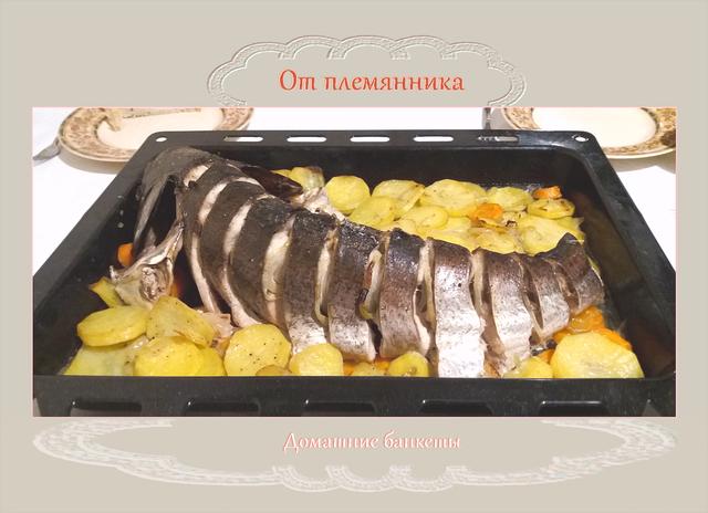 Чудо-рыба от племянника _v3-4 READY ©фотоGenuineLera _181028 Москва