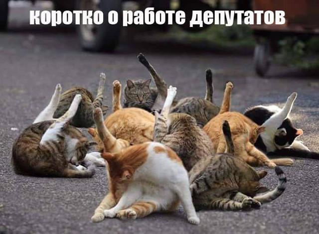http://images.vfl.ru/ii/1540803510/ab72a05a/23984182.jpg