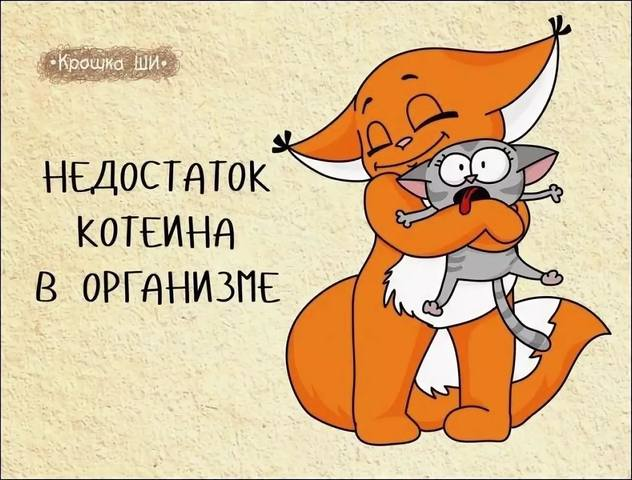 http://images.vfl.ru/ii/1541535636/3c45f3b0/24092282_m.jpg
