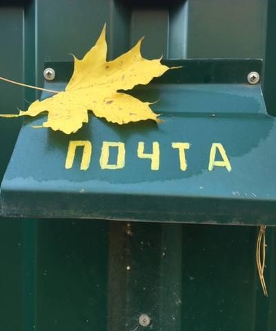 http://images.vfl.ru/ii/1541689220/6f9fad02/24113725_m.jpg