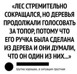 http://images.vfl.ru/ii/1541714645/43937864/24117987_m.jpg