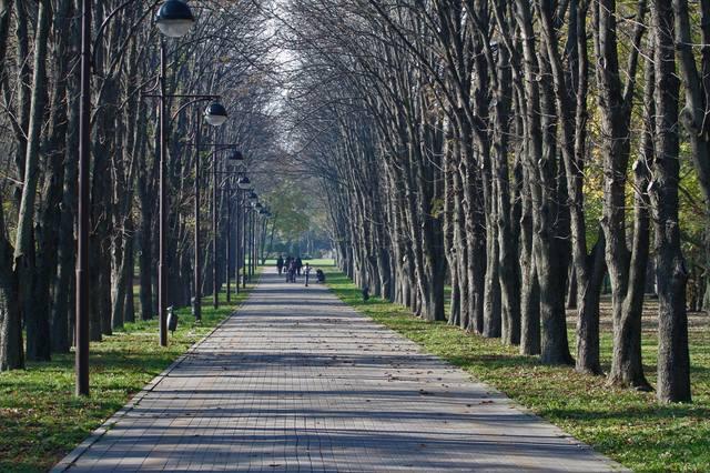 http://images.vfl.ru/ii/1541790077/b53ac306/24129367_m.jpg