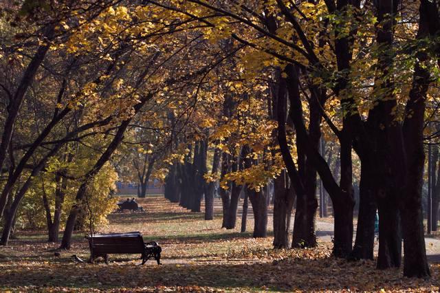 http://images.vfl.ru/ii/1541790462/f2a413c8/24129462_m.jpg
