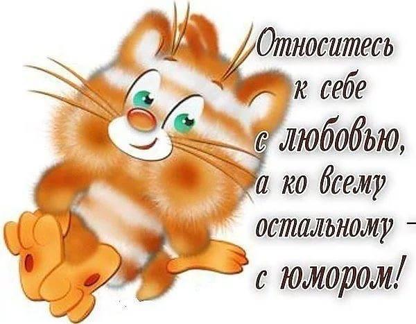 http://images.vfl.ru/ii/1541883687/8ec7c4e8/24143594_m.jpg