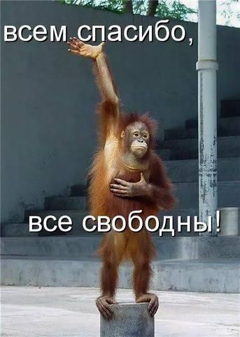 http://images.vfl.ru/ii/1541885828/b3d91483/24143947_m.jpg