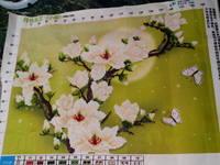 http://images.vfl.ru/ii/1541928811/24882cb4/24146979_s.jpg
