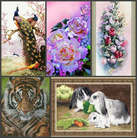 http://images.vfl.ru/ii/1541930738/0d52661d/24147391_m.jpg