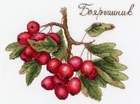 http://images.vfl.ru/ii/1541932098/a9dae933/24147673_s.jpg