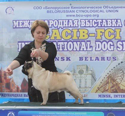 http://images.vfl.ru/ii/1542178947/b9e5b7ff/24187122_m.jpg