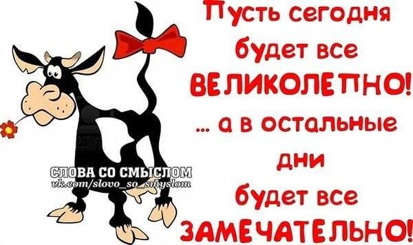 http://images.vfl.ru/ii/1542298925/4ed456f3/24208441_m.jpg