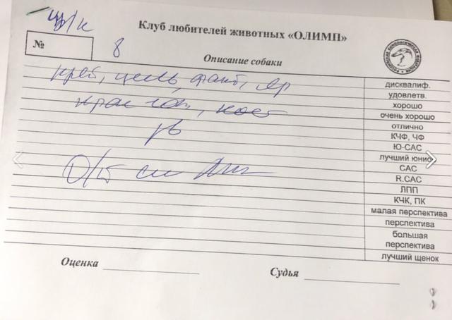 http://images.vfl.ru/ii/1542827738/2d257e43/24301655_m.png