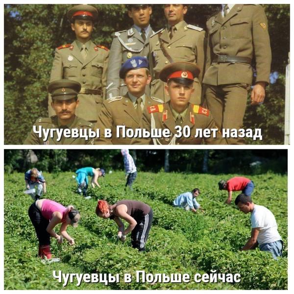 http://images.vfl.ru/ii/1543513755/773b667d/24406471.jpg