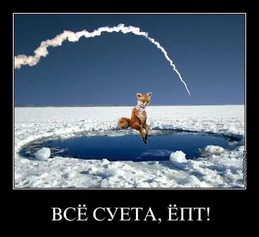 http://images.vfl.ru/ii/1543595320/8bba3360/24417192_m.jpg