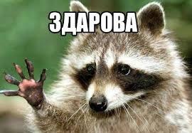 http://images.vfl.ru/ii/1543837312/e6e9cd49/24453590.jpg