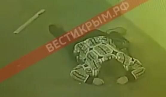 http://images.vfl.ru/ii/1543867603/8b4685f4/24461092_m.jpg
