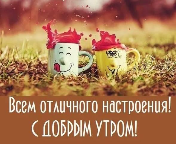 http://images.vfl.ru/ii/1543994653/7929364e/24477500_m.jpg