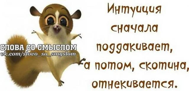 http://images.vfl.ru/ii/1543996106/09850054/24477840_m.jpg