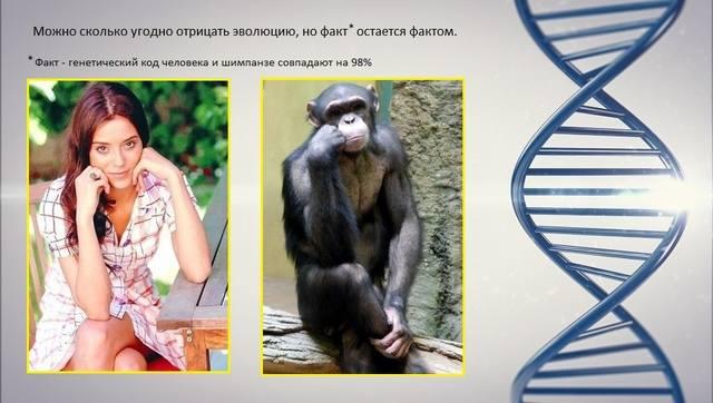 http://images.vfl.ru/ii/1544097886/dd931951/24495019_m.jpg
