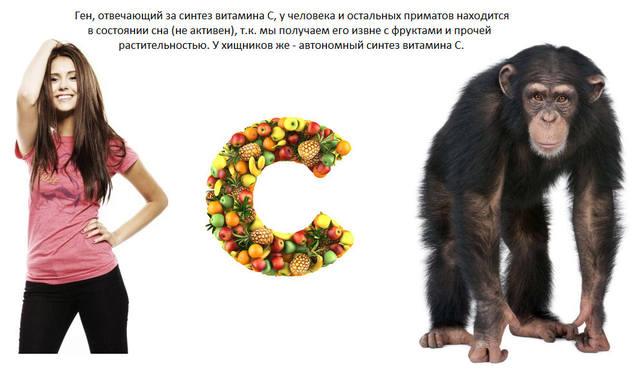 http://images.vfl.ru/ii/1544098243/8f587242/24495077_m.jpg