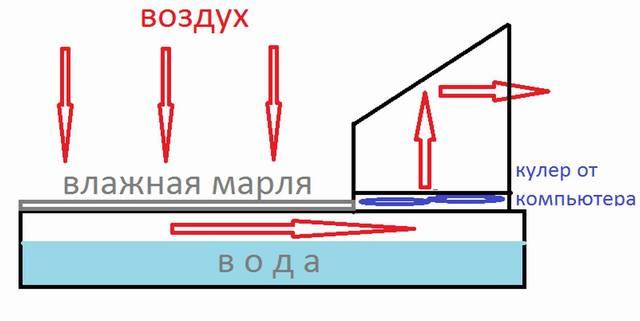 http://images.vfl.ru/ii/1545107988/f22c3761/24641333_m.jpg