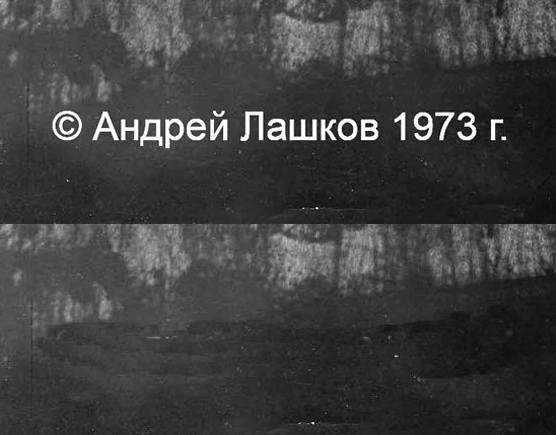 http://images.vfl.ru/ii/1545119946/fd91d273/24642485_m.jpg