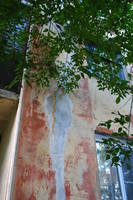 http://images.vfl.ru/ii/1545478654/c0f5b31e/24691344_s.jpg