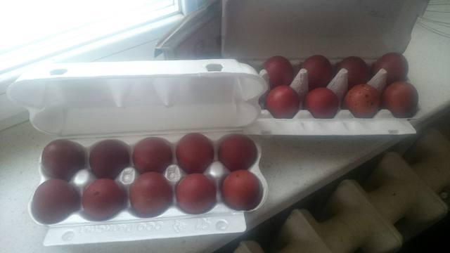 Мараны - порода кур, несущие пасхальные яйца - Страница 18 24692030_m