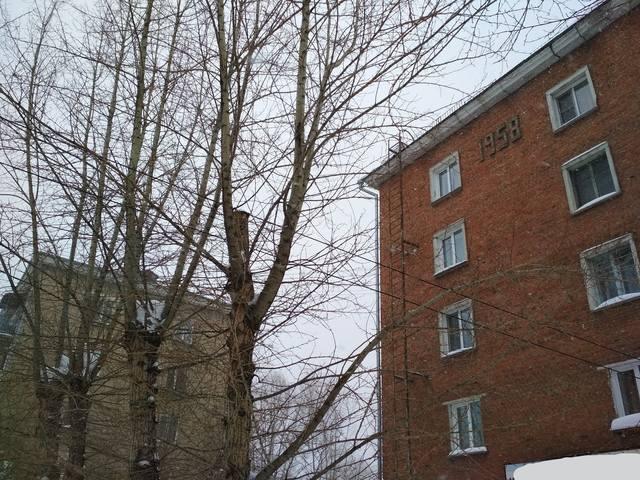http://images.vfl.ru/ii/1545530053/3962c8b6/24697426_m.jpg