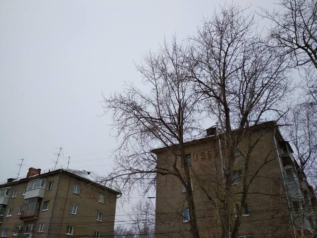 http://images.vfl.ru/ii/1545531542/d123c7e9/24697458_m.jpg