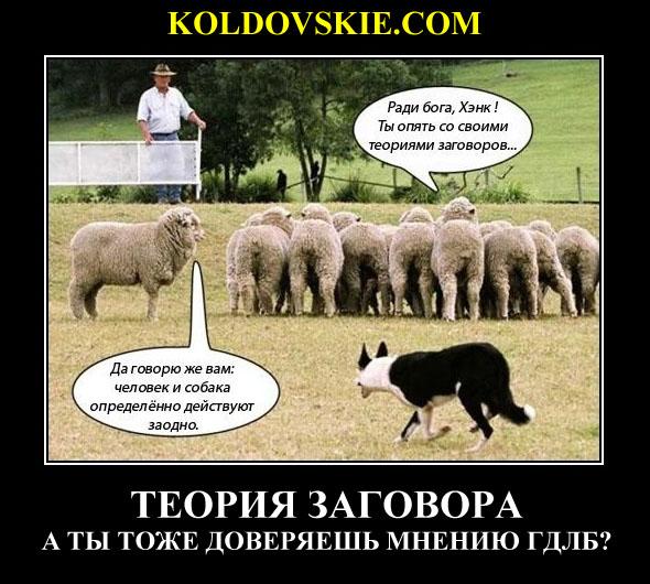 http://images.vfl.ru/ii/1546426663/24a22648/24796404.jpg
