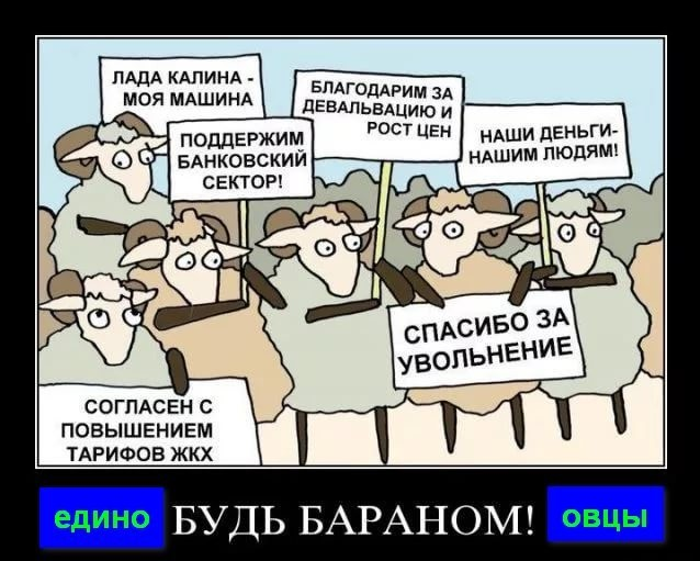 http://images.vfl.ru/ii/1546426777/e034af14/24796411.jpg