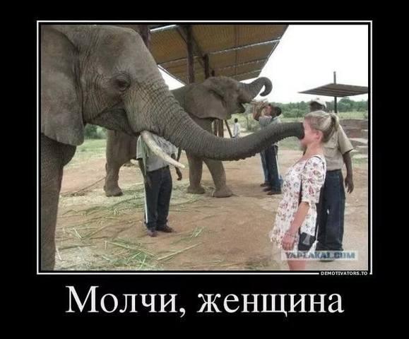 http://images.vfl.ru/ii/1546471237/755eef1b/24802861_m.jpg