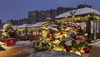 Новогодний базарчик у ст. метро Н. Черёмушки. Фото Морошкина В.В.