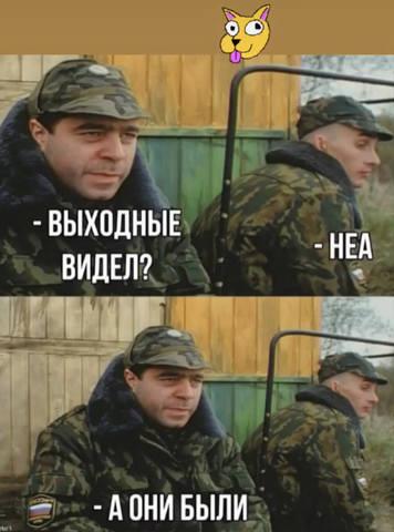 http://images.vfl.ru/ii/1546851598/f1d8c45a/24849573_m.jpg