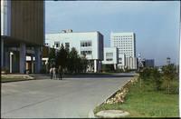 http://images.vfl.ru/ii/1546945750/1ea4fa79/24862523_s.jpg