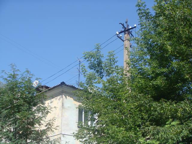 http://images.vfl.ru/ii/1546955808/3050c098/24864224_m.jpg