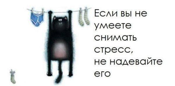 http://images.vfl.ru/ii/1546976935/a9118b1a/24870447_m.jpg