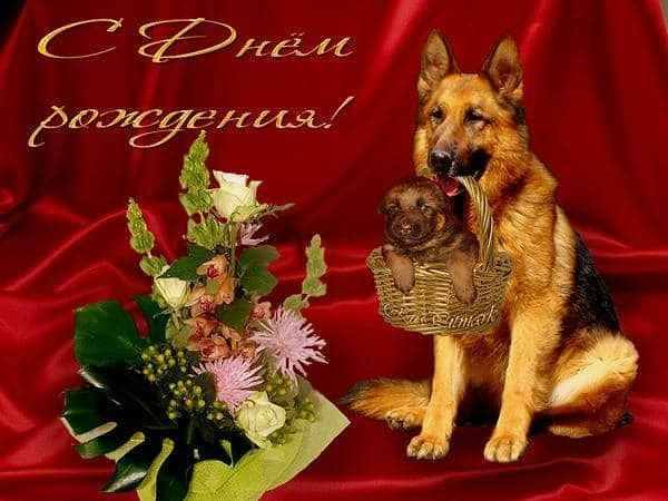 http://images.vfl.ru/ii/1547013301/7e1802f7/24873268_m.jpg