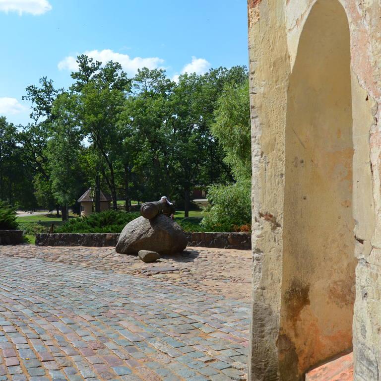 http://images.vfl.ru/ii/1547054564/b8e0c426/24882746.jpg