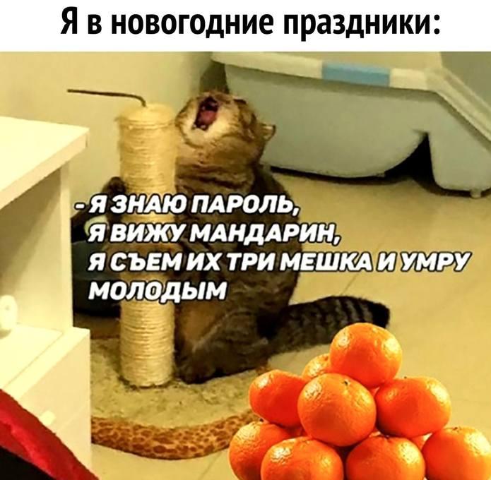 http://images.vfl.ru/ii/1547067466/8736c007/24885778_m.jpg