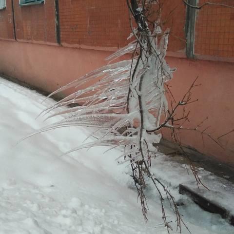 http://images.vfl.ru/ii/1547131275/b1e28ac1/24894259_m.jpg