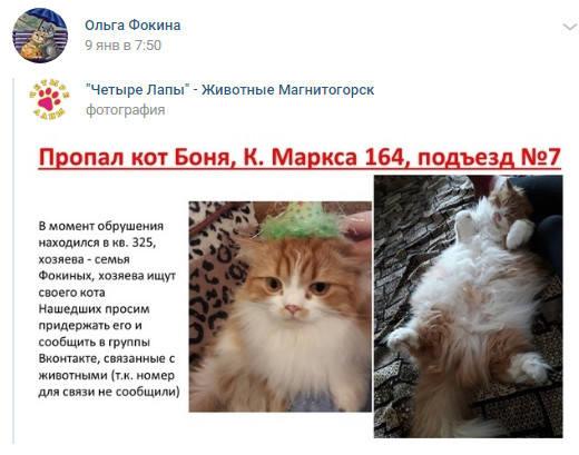 http://images.vfl.ru/ii/1547304364/786e3864/24924668_m.jpg